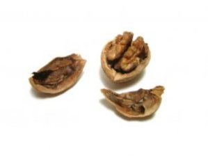 walnut_food_nature_239503_l